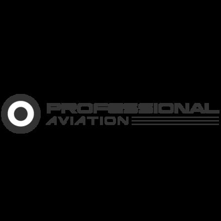 professional aviaton passione volo brevetto pilota aereo